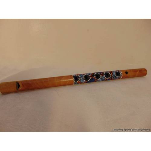 Bambusa flauta